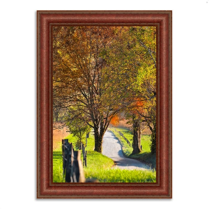 Framed Photograph Print 31 In. x 43 In. Country Road I Multi Color