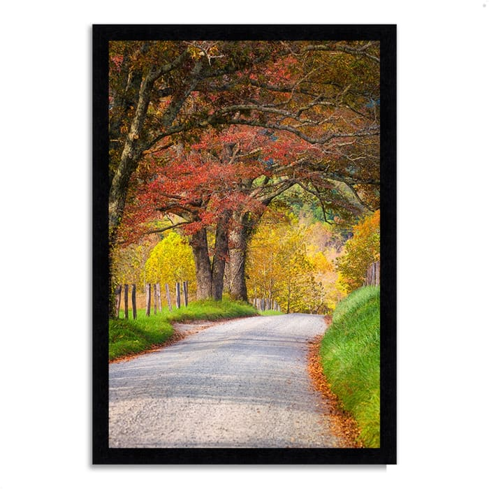 Framed Photograph Print 23 In. x 33 In. Country Road I Multi Color