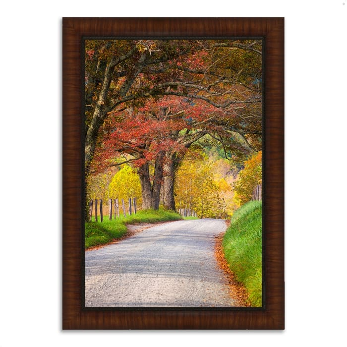 Framed Photograph Print 30 In. x 42 In. Country Road I Multi Color