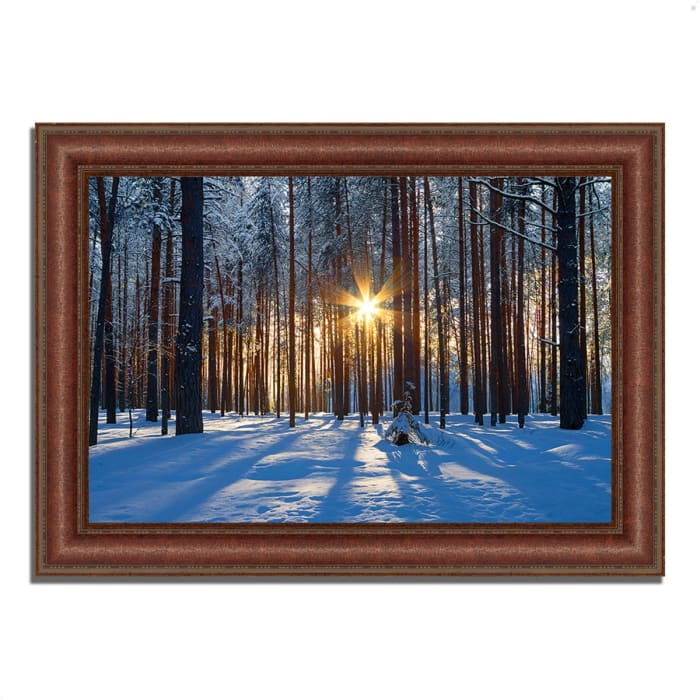 Framed Photograph Print 43 In. x 31 In. Sunset Starburst Multi Color