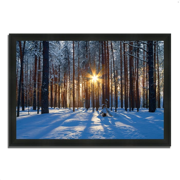 Framed Photograph Print 39 In. x 27 In. Sunset Starburst Multi Color