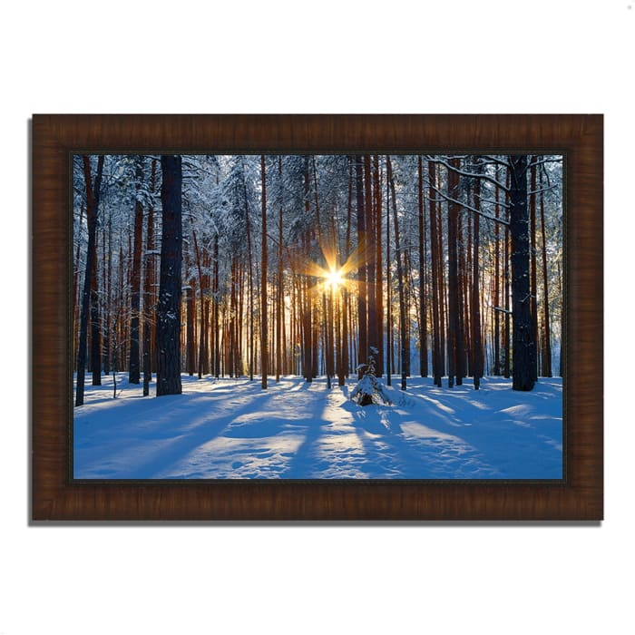 Framed Photograph Print 42 In. x 30 In. Sunset Starburst Multi Color