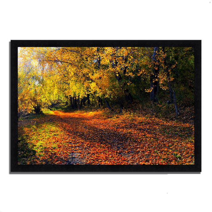 Framed Photograph Print 33 In. x 23 In. Auburn Trail Multi Color