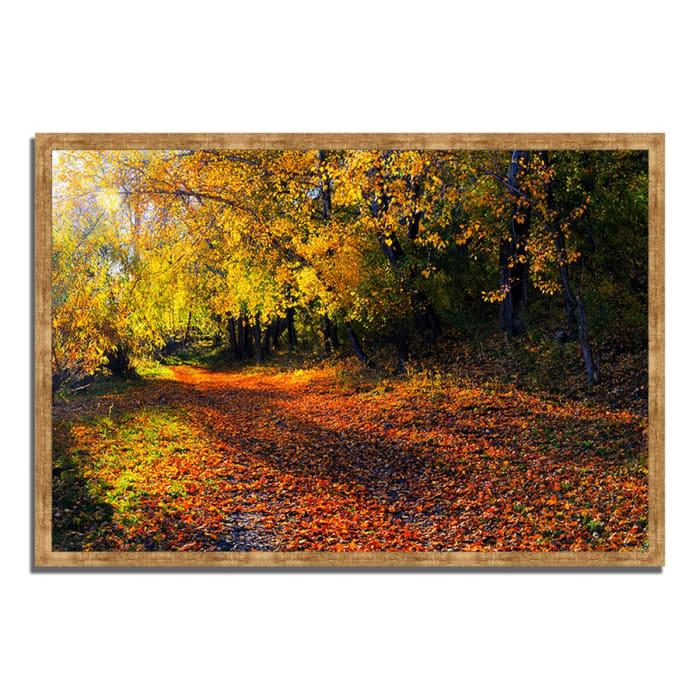 Framed Photograph Print 32 In. x 22 In. Auburn Trail Multi Color