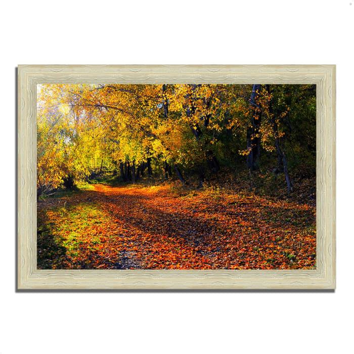 Framed Photograph Print 42 In. x 30 In. Auburn Trail Multi Color