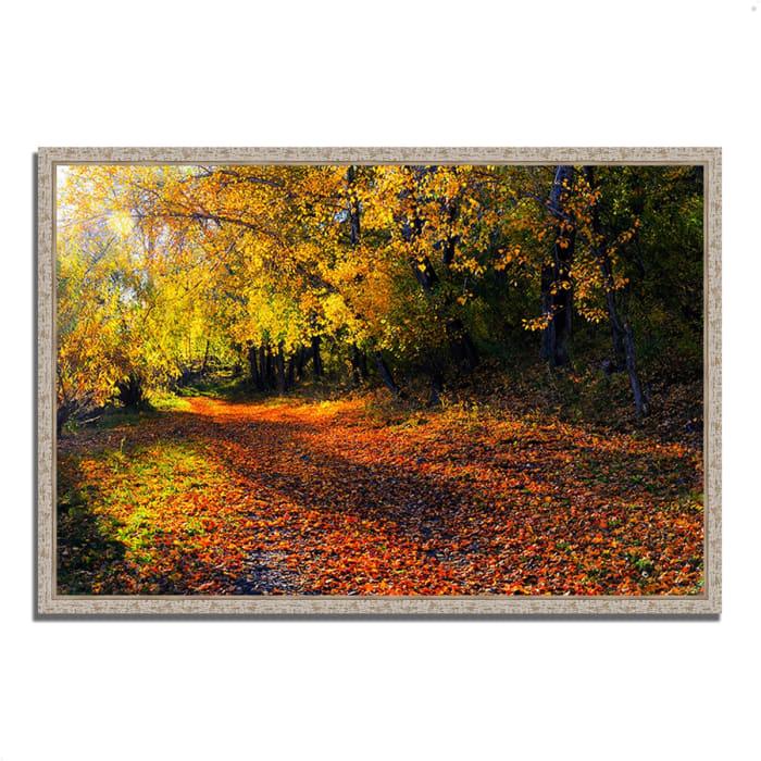 Fine Art Giclee Print on Gallery Wrap Canvas 47 In. x 32 In. Auburn Trail Multi Color