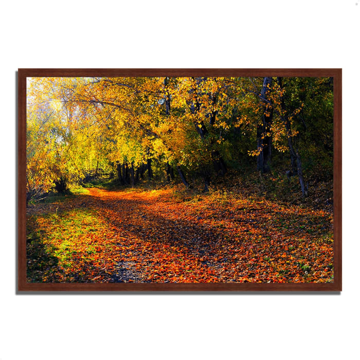 Framed Photograph Print 59 In. x 40 In. Auburn Trail Multi Color
