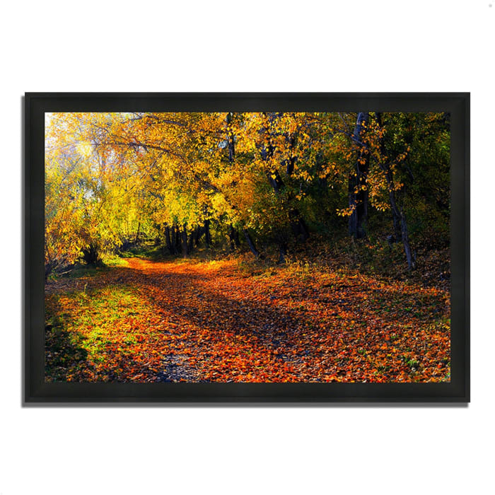 Framed Photograph Print 60 In. x 41 In. Auburn Trail Multi Color