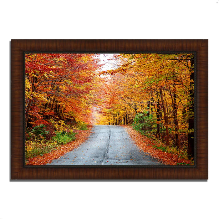 Framed Photograph Print 36 In. x 26 In. Autumn Afternoon Multi Color