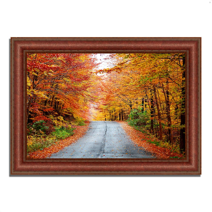Framed Photograph Print 43 In. x 31 In. Autumn Afternoon Multi Color