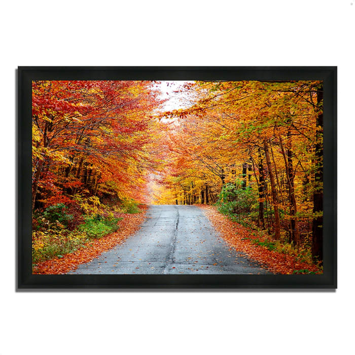 Framed Photograph Print 39 In. x 27 In. Autumn Afternoon Multi Color