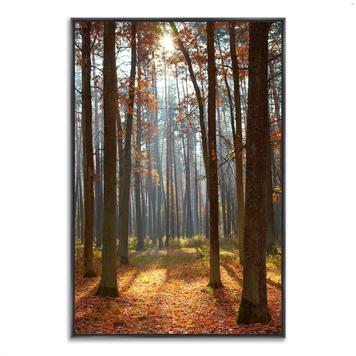 Fine Art Giclee Print on Gallery Wrap Canvas 22 In. x 32 In. Autumn Forest Multi Color