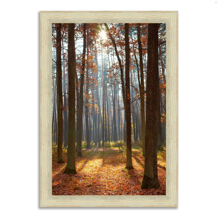 Framed Photograph Print 26 In. x 36 In. Autumn Forest Multi Color