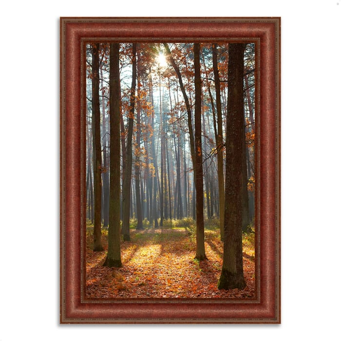 Framed Photograph Print 31 In. x 43 In. Autumn Forest Multi Color