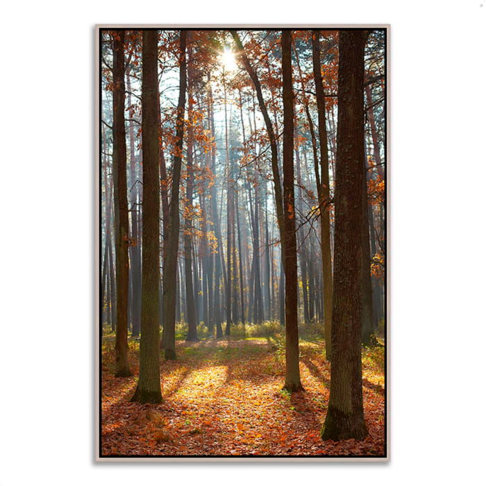 Fine Art Giclee Print on Gallery Wrap Canvas 32 In. x 47 In. Autumn Forest Multi Color