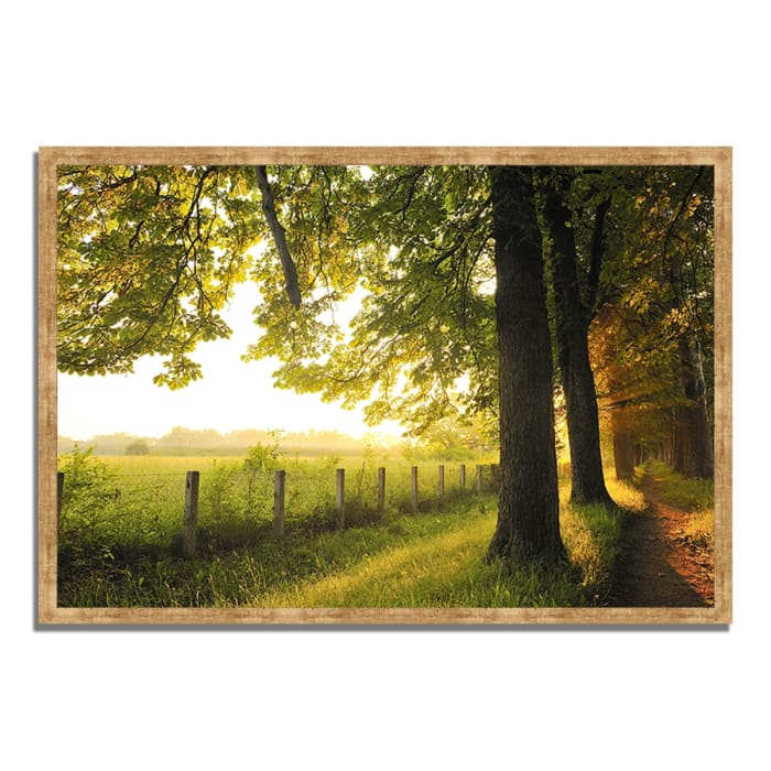 Framed Photograph Print 38 In. x 26 In. Fresh Morning Sun Multi Color