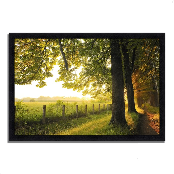 Framed Photograph Print 33 In. x 23 In. Fresh Morning Sun Multi Color