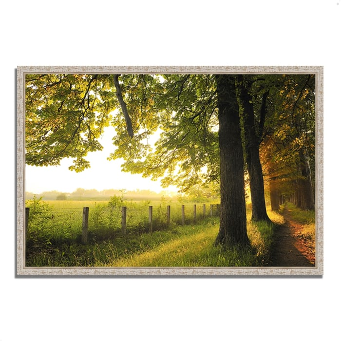 Fine Art Giclee Print on Gallery Wrap Canvas 59 In. x 40 In. Fresh Morning Sun Multi Color