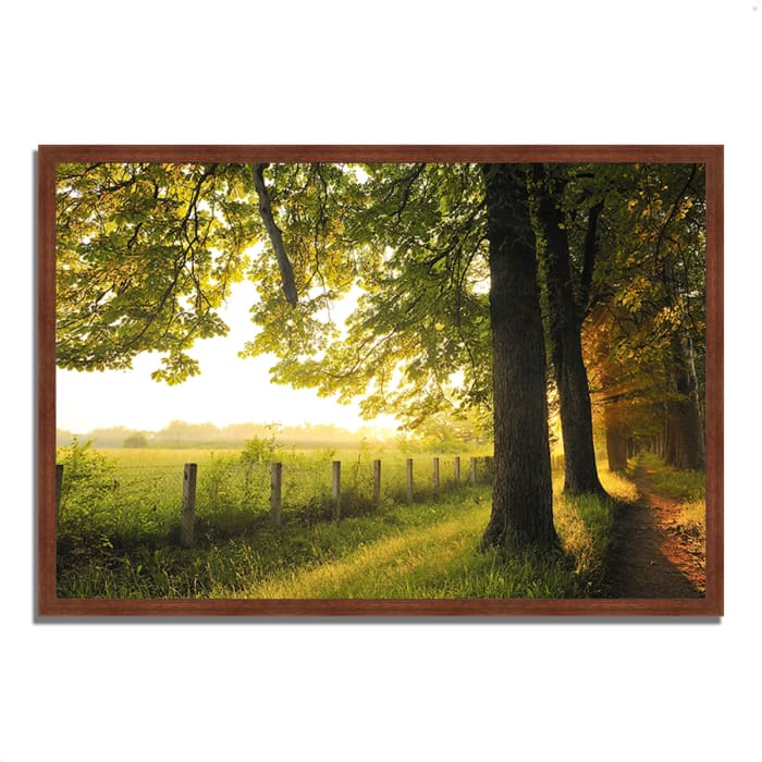 Framed Photograph Print 32 In. x 22 In. Fresh Morning Sun Multi Color