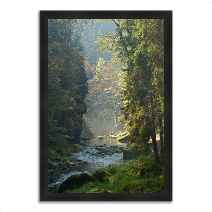 Framed Photograph Print 39 In. x 27 In. Paradise Found Multi Color
