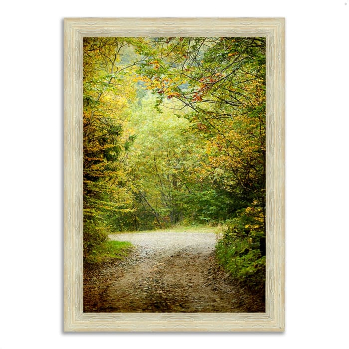Framed Photograph Print 51 In. x 36 In. Summers End Multi Color