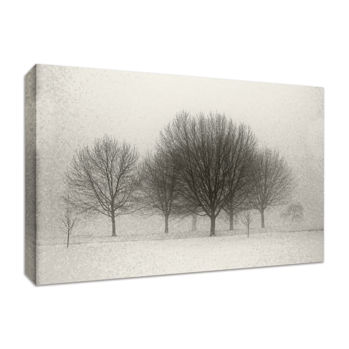 Fine Art Giclee Print on Gallery Wrap Canvas 30 In. x 20 In. Fading Memories Multi Color