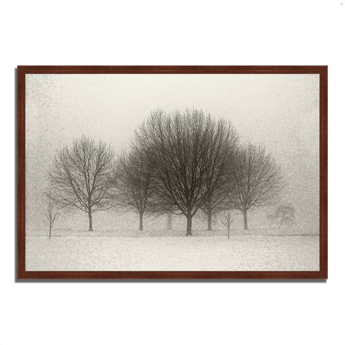 Framed Photograph Print 59 In. x 40 In. Fading Memories Multi Color