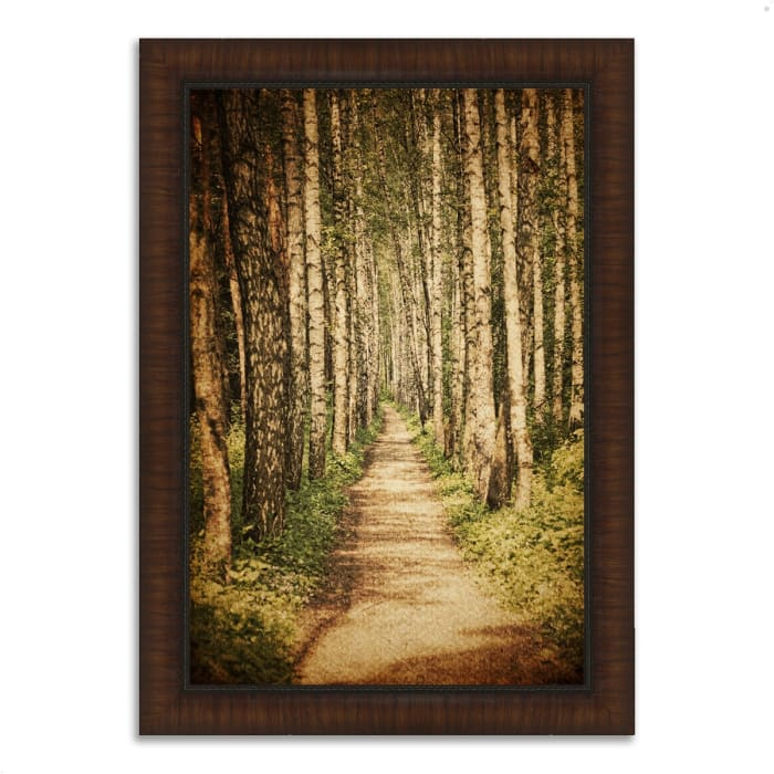 Framed Photograph Print 30 In. x 42 In. The Old Aspen Trail Multi Color