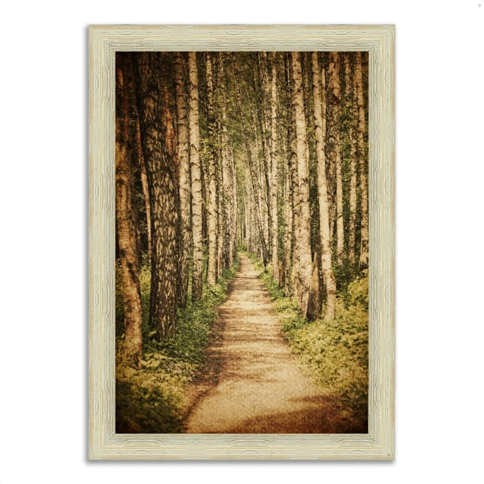 Framed Photograph Print 26 In. x 36 In. The Old Aspen Trail Multi Color