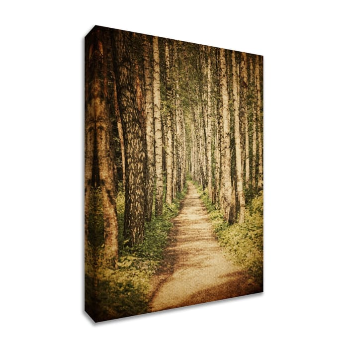 Fine Art Giclee Print on Gallery Wrap Canvas 38 In. x 57 In. The Old Aspen Trail Multi Color