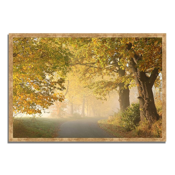 Framed Photograph Print 47 In. x 32 In. On A Misty Autumn Morning Multi Color