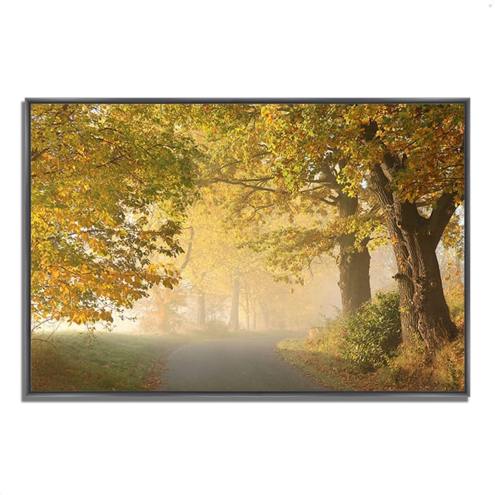 Fine Art Giclee Print on Gallery Wrap Canvas 59 In. x 40 In. On A Misty Autumn Morning Multi Color