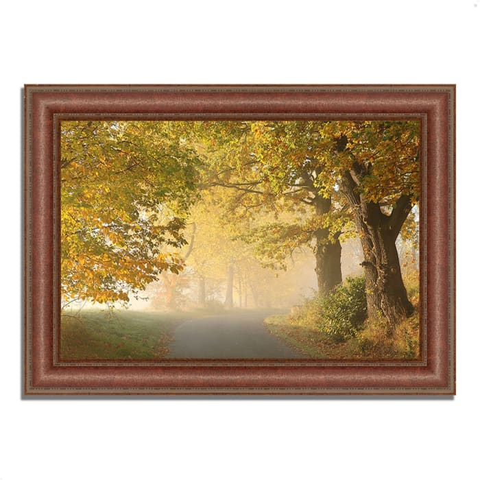 Framed Photograph Print 37 In. x 27 In. On A Misty Autumn Morning Multi Color