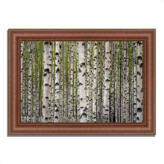 Framed Photograph Print 43 In. x 31 In. Spring Birch Multi Color