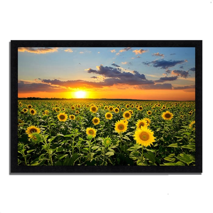 Framed Photograph Print 60 In. x 41 In. Sunflower Sunset Multi Color