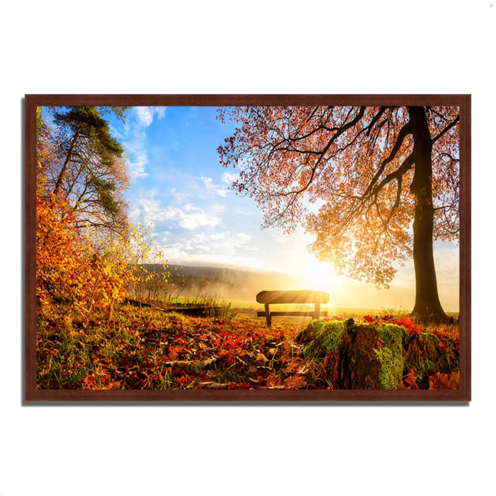 Framed Photograph Print 38 In. x 26 In. Warmly Illumining Multi Color