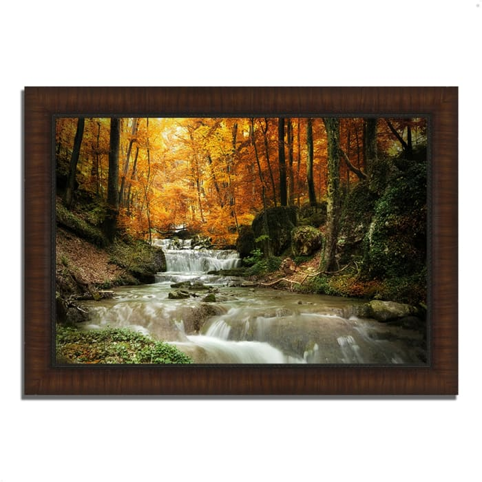 Framed Photograph Print 63 In. x 44 In. Autumn Stream Multi Color