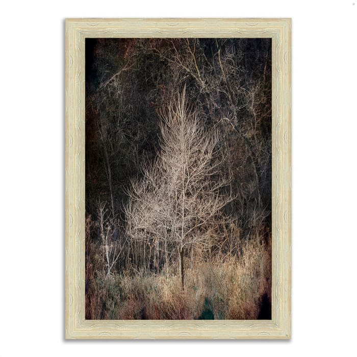 Framed Photograph Print 26 In. x 36 In. Illumination Multi Color