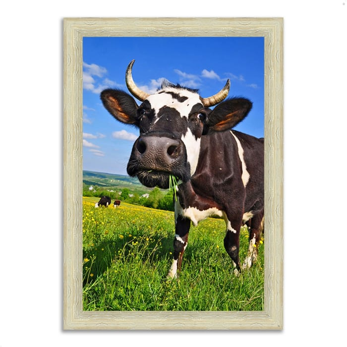 Framed Photograph Print 44 In. x 63 In. It's In The Milk Multi Color