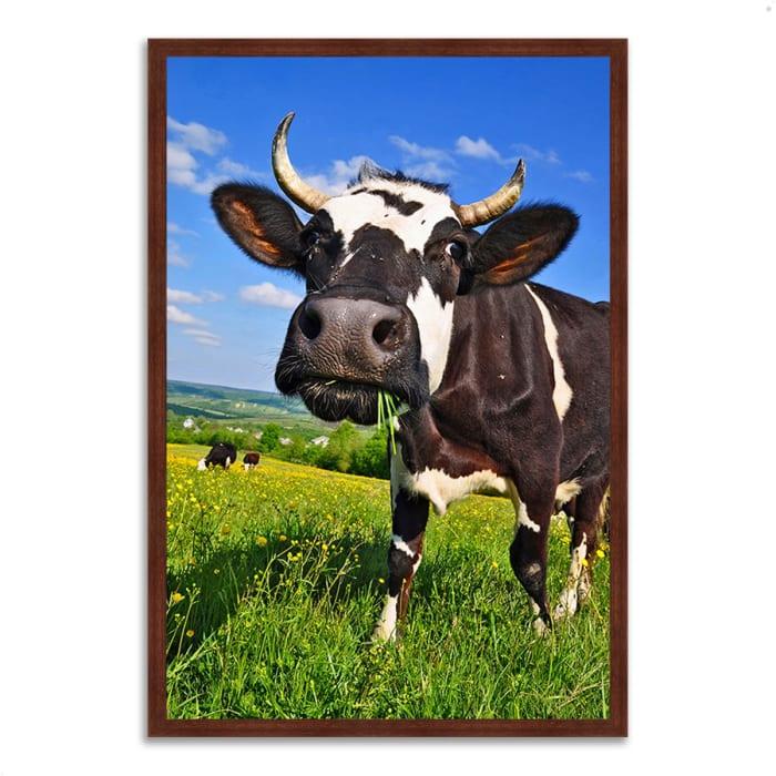 Framed Photograph Print 40 In. x 59 In. It's In The Milk Multi Color