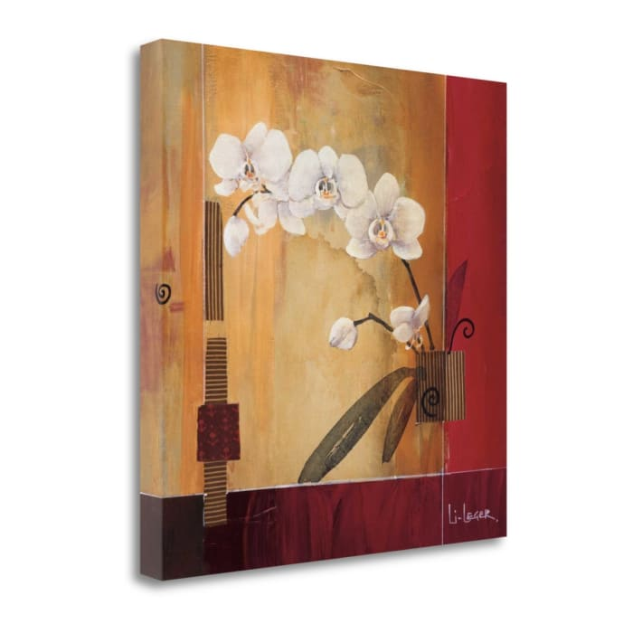 Orchid Lines II By Don Li-Leger 22 x 22 Gallery Wrap Canvas