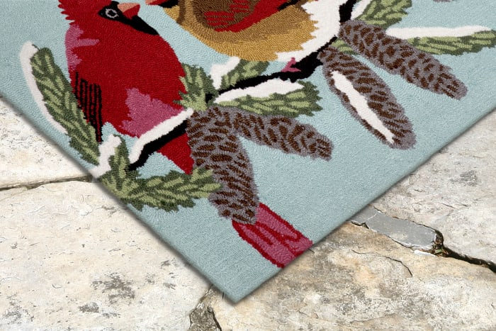 Cardinals Indoor/Outdoor Rug Sky 2'5