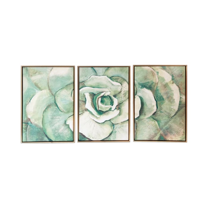 Succulent Canvas Set of 3