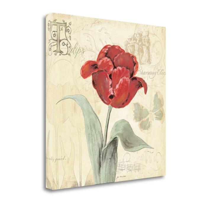 Fine Art Giclee Print on Gallery Wrap Canvas 20 In. x 20 In. Tulip Gem I By Jo Moulton Multi Color