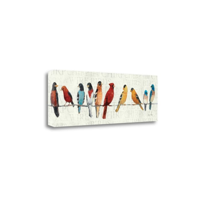Gallery Wrap Canvas 36 In. x 12 In. The Usual Suspects - Birds On A Wire By Avery Tillmon Multi Color