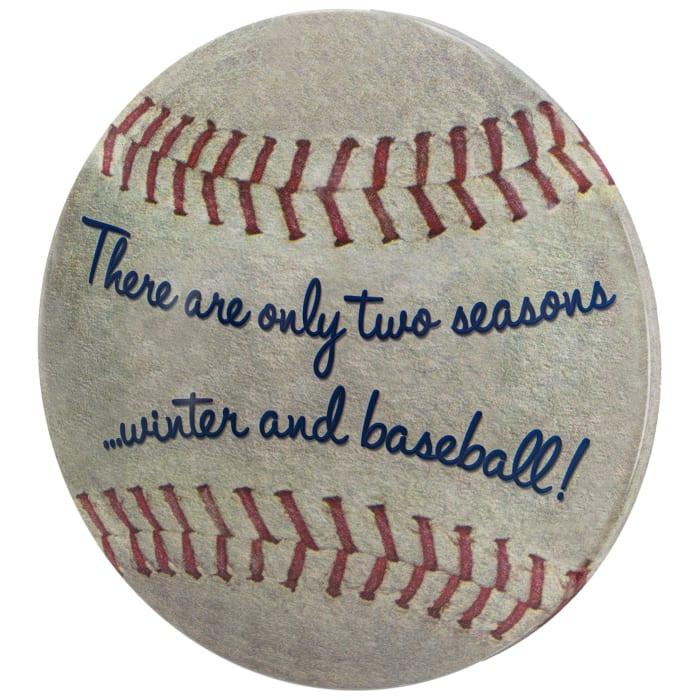 Two Seasons Baseball Dome Metal Sign (15