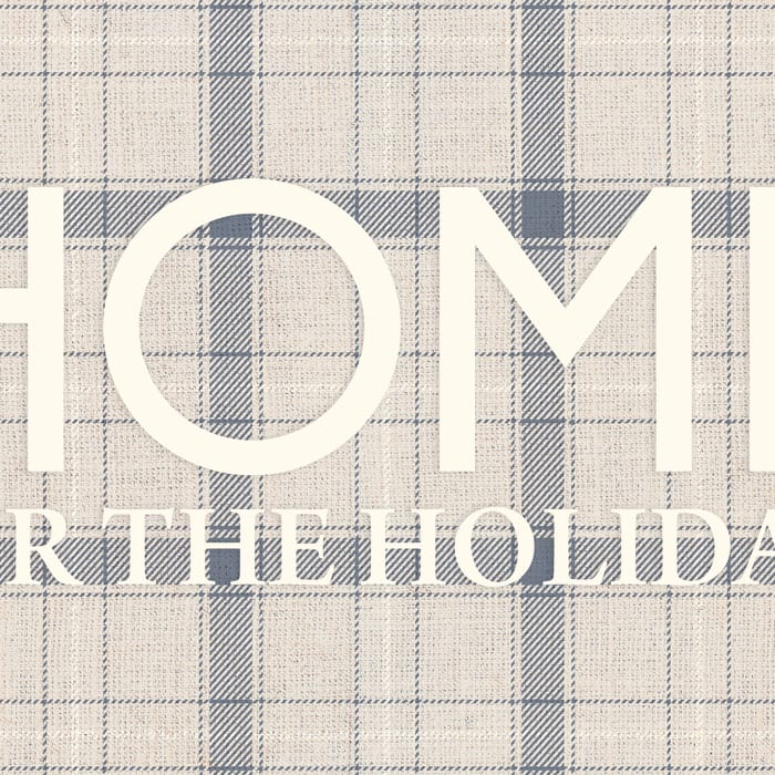Home for the Holidays Vinyl 4'5