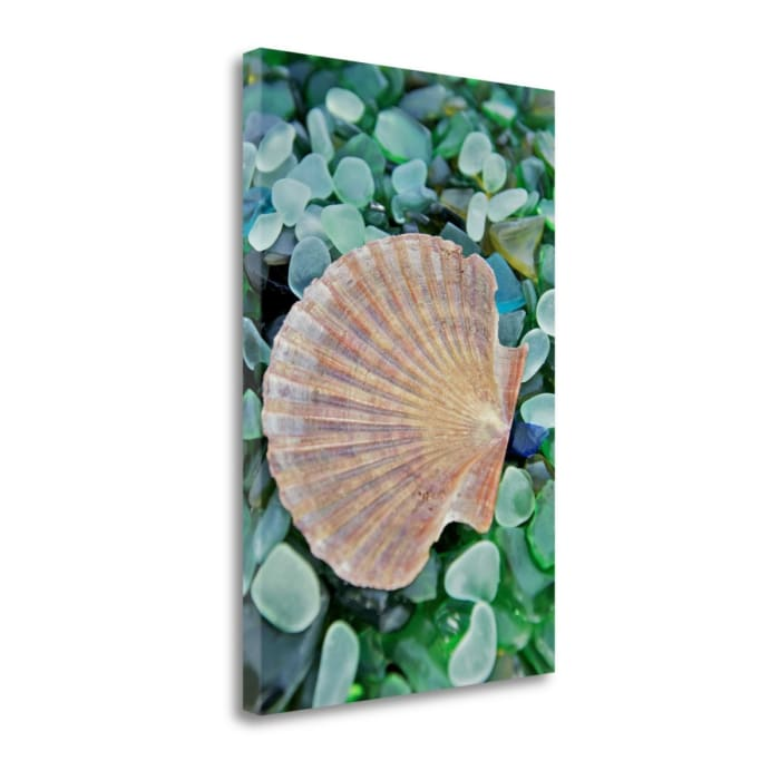 Crystal Cove - 25 By Alan Blaustein Wrapped Canvas Wall Art