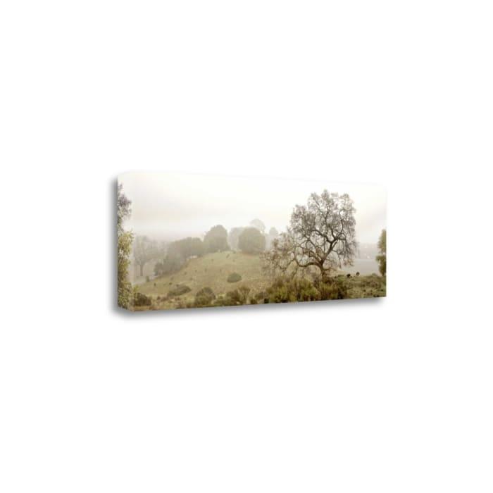 Oak Tree - 43 By Alan Blaustein Wrapped Canvas Wall Art