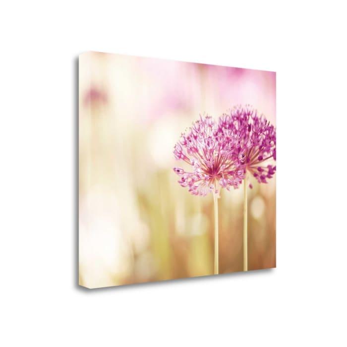 Bloom By Carolyn Cochrane Wrapped Canvas Wall Art